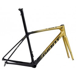 2020 Giant TCR Advanced SL Team Road Frameset
